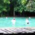 Krabi Rainforest Day Tour
