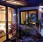 palmtree_suite1