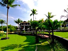 sala_mangrove3